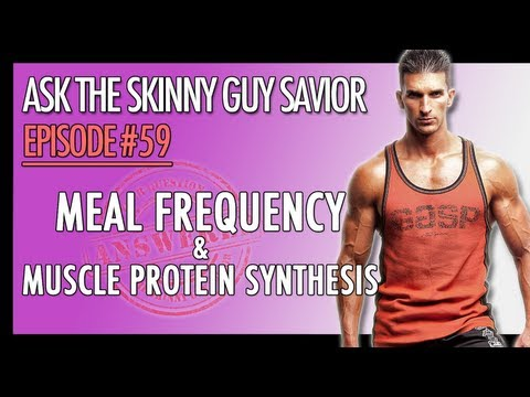 Meal Frequency, Optimal Meal Timing, Muscle Protein Synthesis Facts…