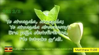 Enyimba Ez' okutendereza Katonda mu Luganda- Namirembe Cathedral 2016 by Joshua Ayebare Kampala for Yesu Mulungi, sister lyrics for Yesu Asiimwe. To the Glor...