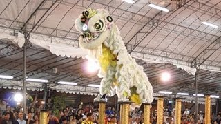Video Barongsai Indonesia 印尼蘇島民禮鎮元寺龍獅團體 2013 International Lion Dance Competition 2013 MP3, 3GP, MP4, WEBM, AVI, FLV Februari 2019