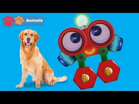 Learn About Dogs & Animals for Kids with Robi   Animals Names & Sounds   Wild Animals for Children