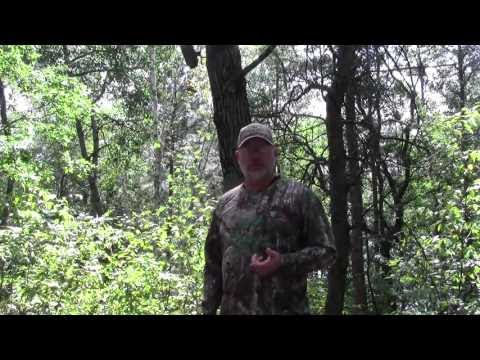 Using a Stic & Pic to keep your game camera out of the hands of trail camera theives. (видео)