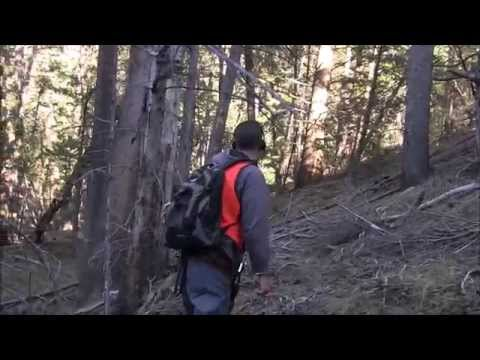 Epic Bigfoot Expedition Most Evidence in One Expedition