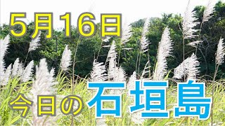5月16日の石垣島天気