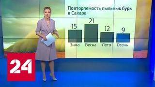 Новая утка: теперь померещился российский спецназ на границе с Ливией