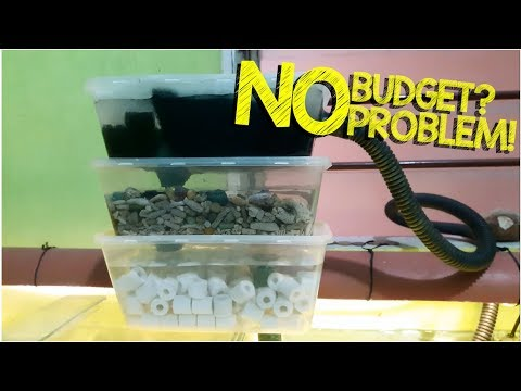 DIY: Trickle Filter Mini |  Overhead Aquarium Sump