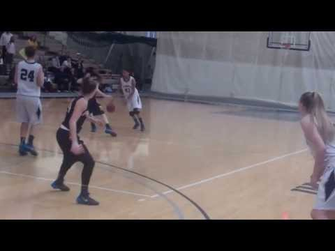 Women's Basketball highlights vs. Emory