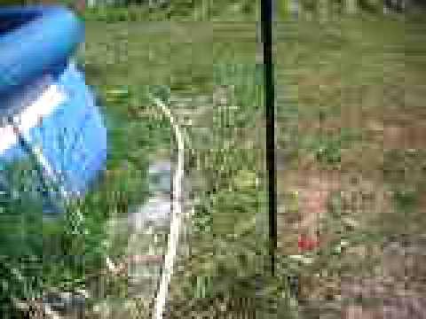 Comment traiter eau verte piscine la r ponse est sur for Eau piscine verte