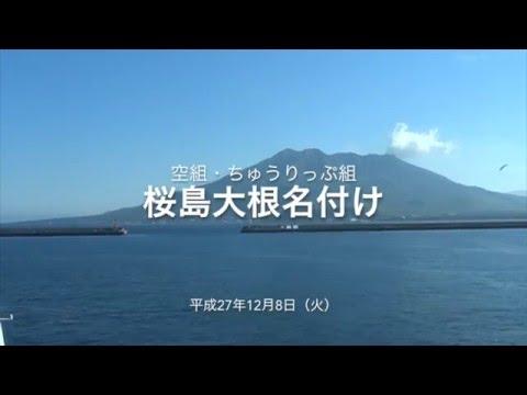 平成27年 桜島大根・名付け