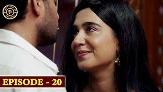 Surkh Chandni   Episode 20   Top Pakistani Drama