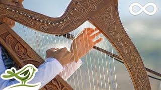 Video Relaxing Harp Music: Sleep Music, Meditation Music, Spa Music, Study Music, Instrumental Music ★49 MP3, 3GP, MP4, WEBM, AVI, FLV Februari 2018