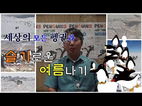 [국립생태원] 세상의 모든 펭귄_정진우 박사님 인터뷰