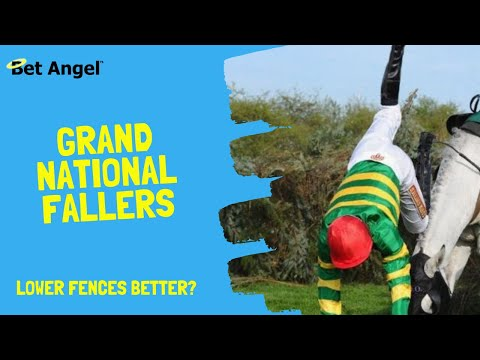 Have Grand National Fence Changes Made Things Worse?