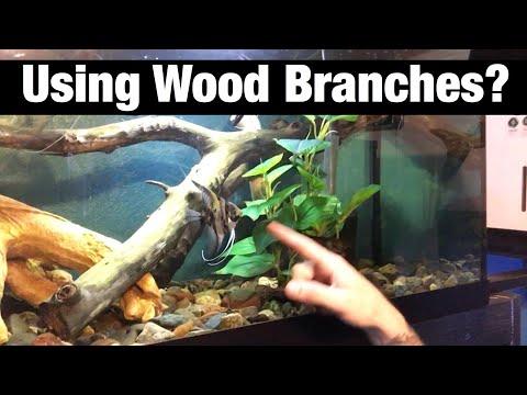 Oak Tree Branches in Aquarium? DIY Decorations