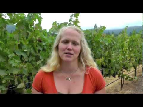 Introducing Frey Organic Agriculturist Wine, from America's 1st organic winery!