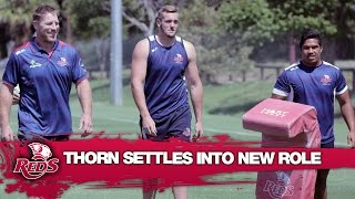 Brad Thorn settles into coaching life with the Reds | Super Rugby Video Highlights