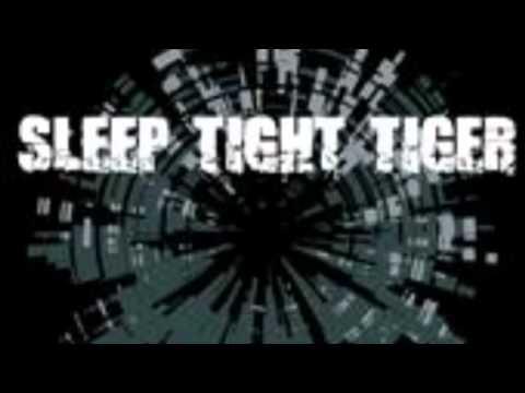 SLEEP TIGHT TIGER - REVERSO(interlude)