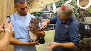 What It's Like to Party at a Zoo by Prehistoric Pets TV