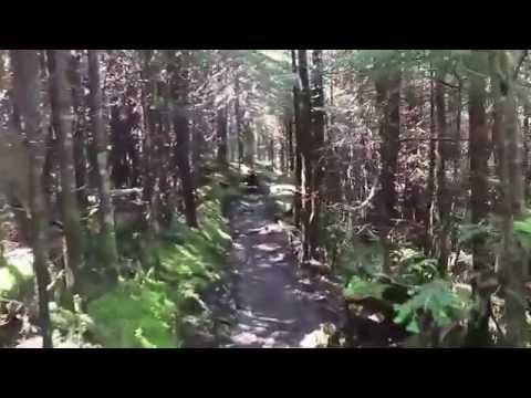 Black Mountain Crest Trail