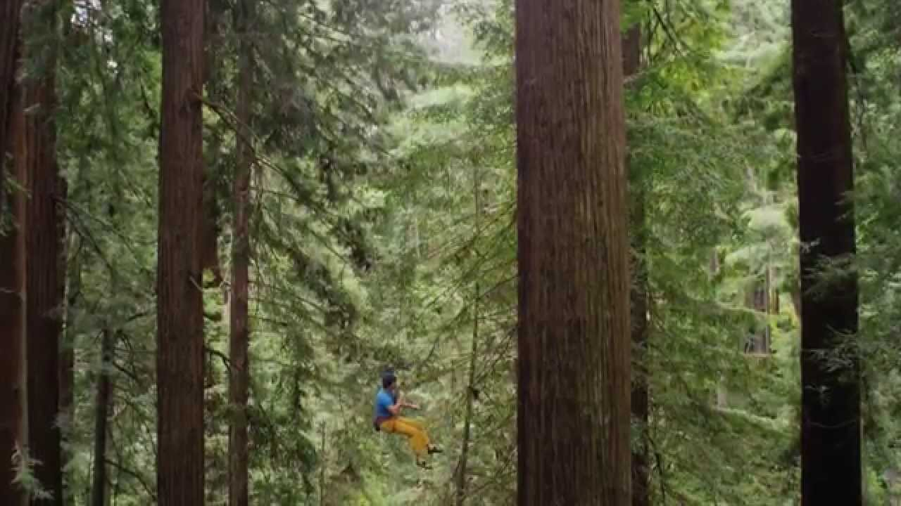 EVASIÓN TV: Chris Sharma escalando árboles de 77 metros