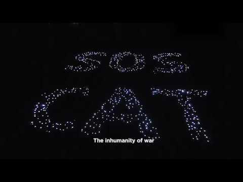 SOS CAT