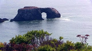 Bodega Bay (CA) United States  City pictures : Goat Rock Beach, Bodega Bay, CA, USA 1080p HD