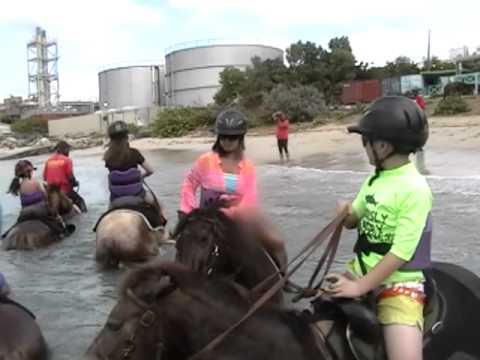 St. Maarten Horseback Riding Adventure - Group