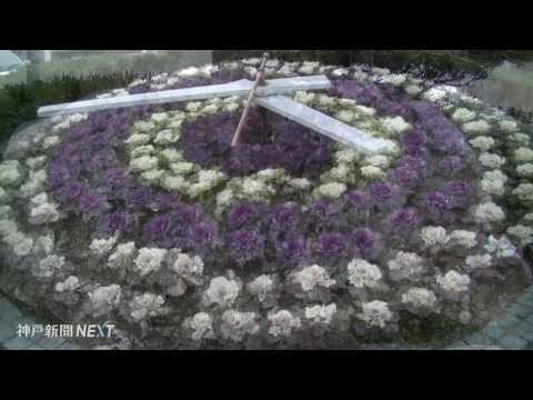 地域の思い込めた彩り みどりの花時計21