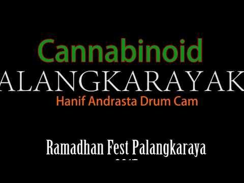 Cannabinoid - Palangkarayaku (Ramadhan Fest Palangkaraya 2017) (Hanif Andrasta Drum Cam)