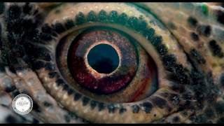 Nonton Voyage of Time: Life's Journey (2016) Trailer Film Subtitle Indonesia Streaming Movie Download