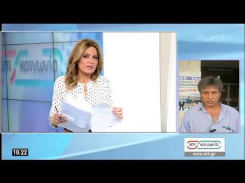 Π. Παρασκευόπουλος: Δεν υπήρχε ξαφνική απεργία-Να γίνει διαλεύκανση της υπόθεσης | 19/02/2020 | ΕΡΤ
