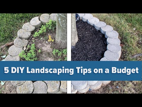 5 DIY Landscaping Tips on a Budget
