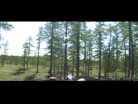 Trip on Mountains Mus-Khaya (Yakutia, summer 2011) (видео)