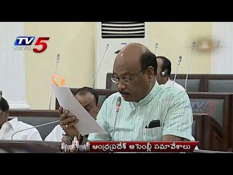 TDP MLA Ayyanna Patrudu On Panchayat Raj & Rural Development   AP Assembly : TV5 News