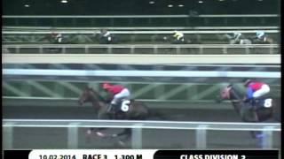 RACE 3 DANDINO 10/02/2014