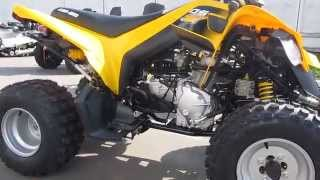 4. Can Am DS 250  ATV