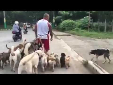 500 anh em đang đi dạo gặp ngay trẩu tre và cái kết =))
