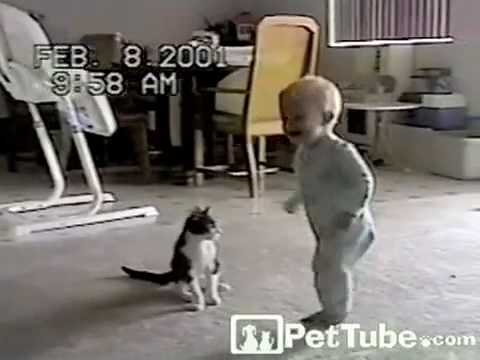 pettube - In a battle of cuteness, a baby and a kitty get ready to rumble! http://pettube.com.