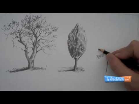 Draw - Visit http://thevirtualinstructor.com/freedrawinglessons.html for more drawing lessons like this one. Learn how to draw trees in this video tutorial. How to ...
