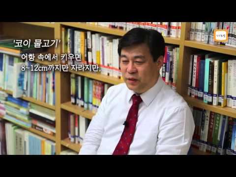 [2015.02.27] 김선동 한국…