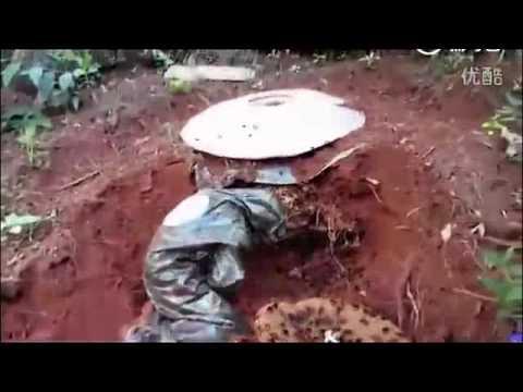 男子挖開兇猛虎頭蜂巢穴!真是大開眼界。 。