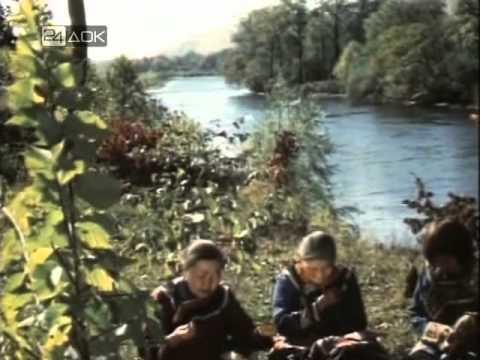 фильмы про тайгу и рыбалку