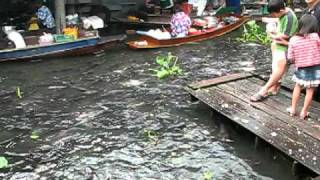 Taling Chan Floating Market Near Bangkok, Thailand - Feeding The Fishes