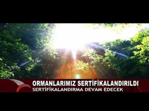 ORMANLARIMIZ SERTİFİKALANDIRILDI