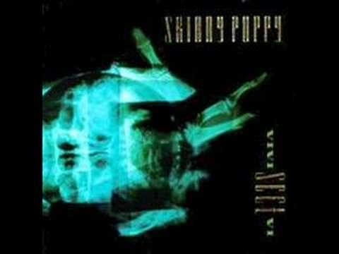 Skinny Puppy - Harsh stone white lyrics