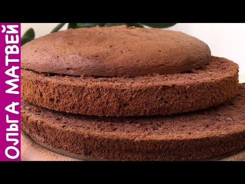 Шоколадный бисквит какао