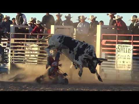 Video Pinon's Bull Bash download in MP3, 3GP, MP4, WEBM, AVI, FLV January 2017