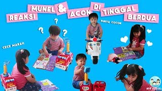 Video APA JADINYA KETIKA MUNEL DAN ACON DI TINGGAL DIRUMAH  !!!#MFVLOG23 MP3, 3GP, MP4, WEBM, AVI, FLV Maret 2019