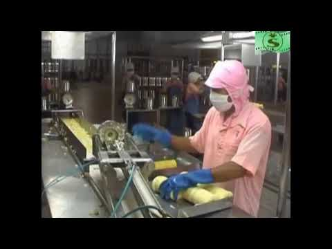 Samingfoods canned pineapple manufacturer