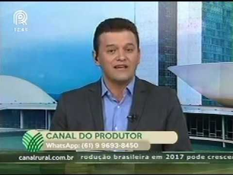 Consultor da CNA fala sobre situação da malha ferroviária brasileira