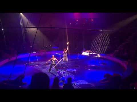 Тигр упал в обморок с судорогами на представлении цирка в Магнитогорске